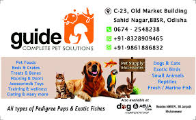 Guide complete pet solution