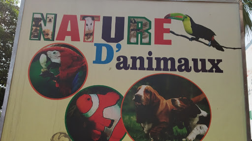 Nature D Animaux
