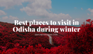 best places to visit in Odisha during winter