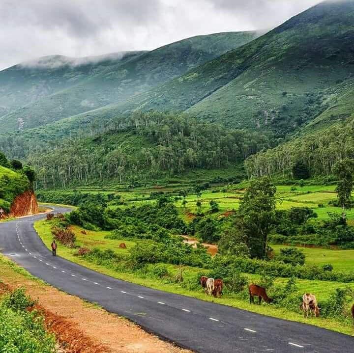 Road-Koraput