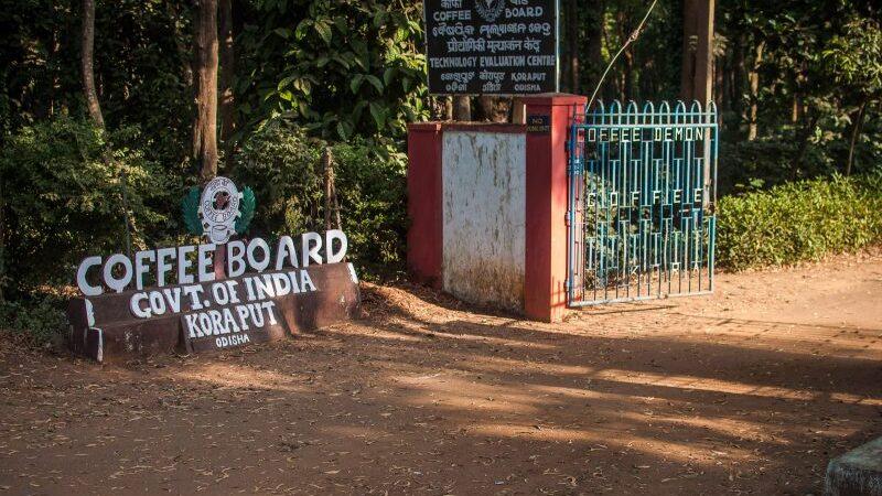 Coffee Board in Koraput