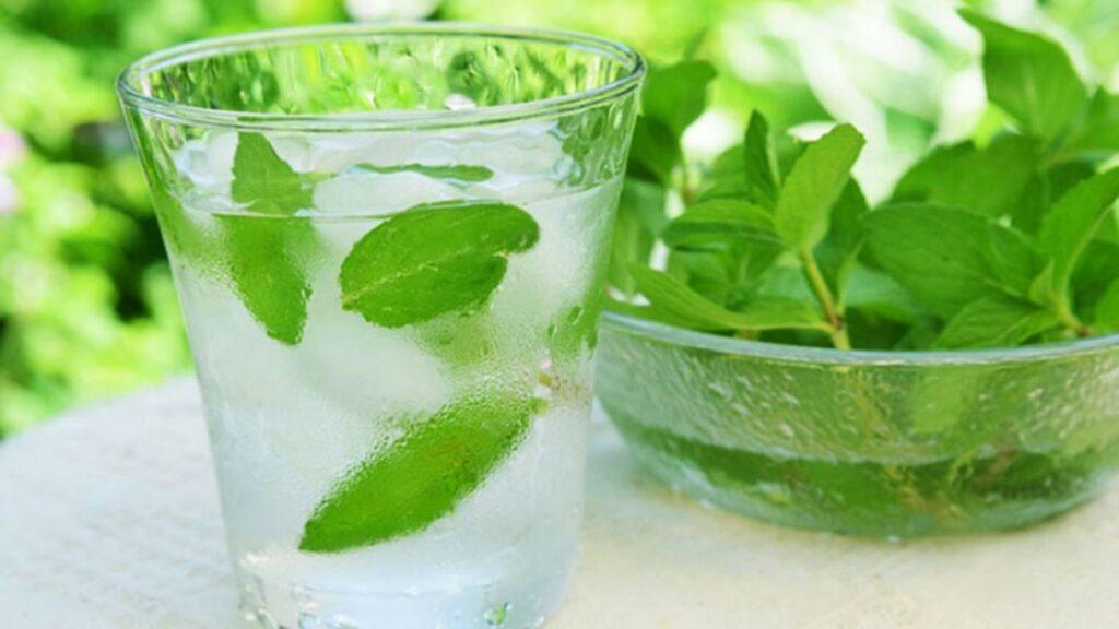 Pudina sharbat drink of Odisha