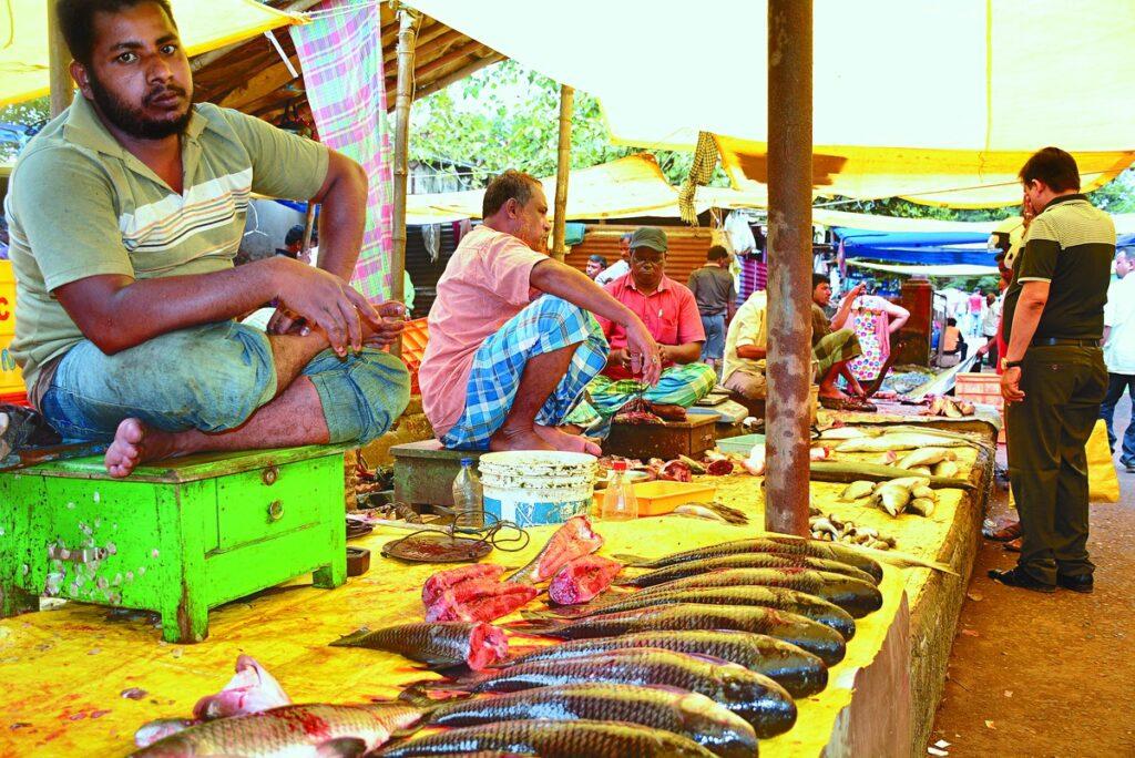 nayapali fish market bbsr