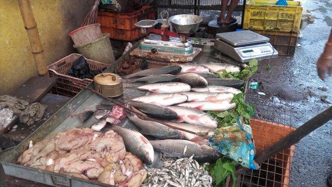 mukuram fish syandicat market