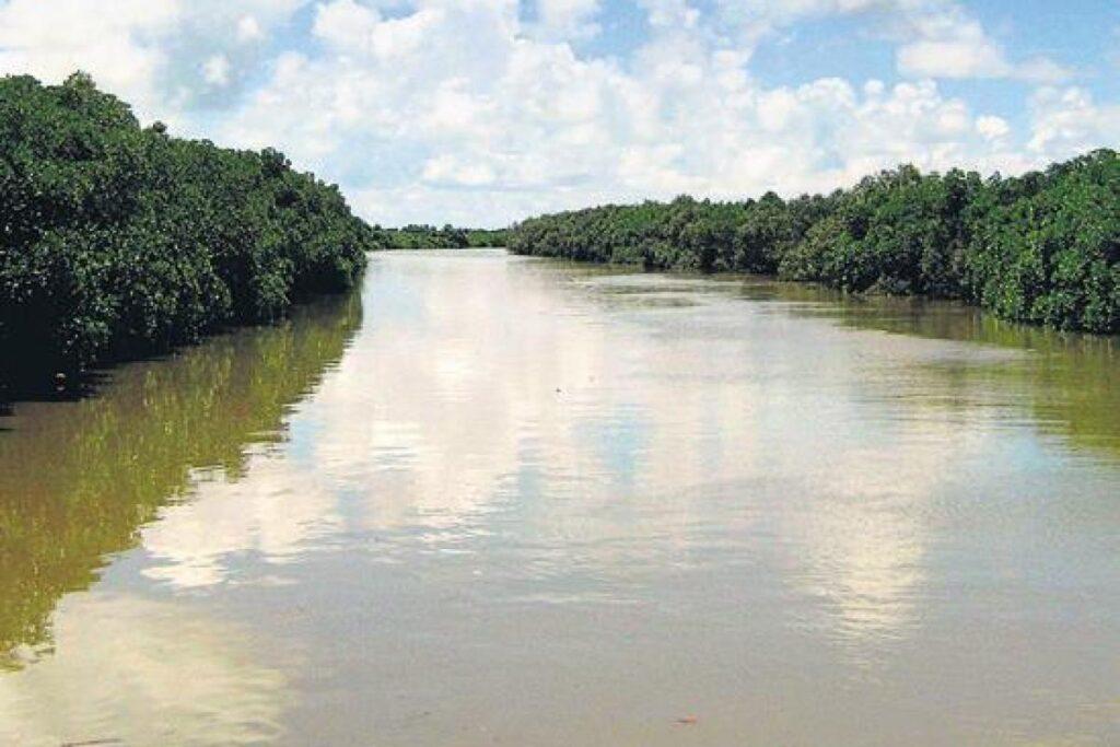 Brahmani river running down the Bhitarkanika Delta
